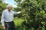 Quỹ Hỗ trợ nông dân: Tạo điểm tựa vững chắc cho nông dân