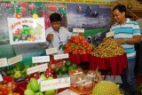 First agricultural trade fair opens in An Giang