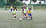 Khai mạc Giải bóng đá truyền thống Cúp công lý tòa án nhân dân tỉnh