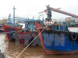 Kêu gọi tàu thuyền hoạt động trên biển nhanh chóng tìm nơi trú ẩn