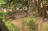 """Vụ ngang nhiên rào chắn lối đi chung ở xã Bình Mỹ, huyện Bắc Tân Uyên: Phát sinh… nhiều """"mâu thuẫn"""""""