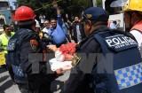 Động đất Mexico: Số người chết tăng lên 138, nhiều người vẫn mắc kẹt