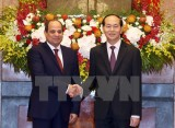 Ambassador: Vietnam-Egypt ties expected to grow strongly