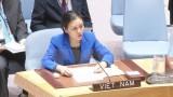 越南出席第72届联大裁军及国际安全委员会会议