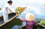 HCM City travel firms hope to profit from waterway tours