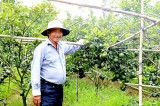 Breakthrough way of Binh Duong's agriculture