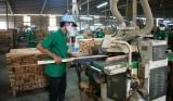 Binh Duong further reaches trade surplus