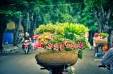 河内市跻身全球游客量增长最快的10大城市名单