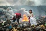 越南作品在国际环境摄影师大赛中荣获一等奖