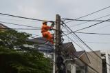 Hiện đại hóa hệ thống điện để phục vụ tốt nhu cầu khách hàng