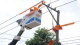 Công ty Điện lực Bình Dương: Ra mắt đội sửa chữa điện Hotline trên địa bàn tỉnh