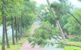 Ảnh hưởng bão số 14 làm tốc mái 18 căn nhà