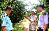 Trước thềm kỳ họp thứ 5, HĐND tỉnh khóa IX: Cử tri quan tâm đến vấn đề nông nghiệp, nông thôn