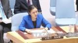 越南出席关于海洋和海洋法的联合国大会全体会议