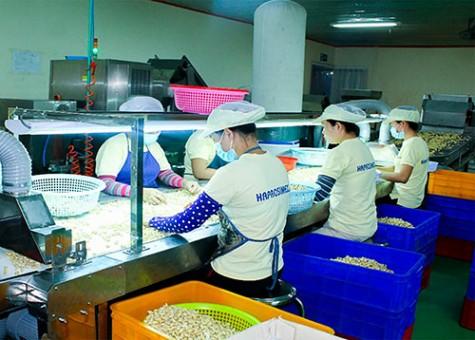 质量和生产率持续改进以提高生产效率