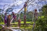 Lạ lùng bộ tộc thích nhảy trên cây và lặn dưới nước