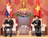 Vietnam, Cambodia legislators pledge to boost ties