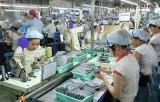 Vietnam is world's second largest shoes exporter
