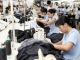 Môi trường kinh doanh khởi sắc, doanh nghiệp thành lập mới tăng 20,6%
