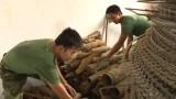 Lực lượng công binh: Bảo đảm an toàn trong rà tìm, xử lý bom mìn