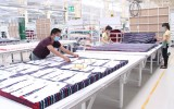 Kỳ vọng tăng tốc thu hút vốn FDI