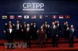 Hiệp định CPTPP chính thức được 11 nước ký kết tại Chile