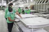 巴乌邦县吸引多FDI大型项目