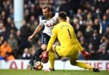 """FA Cup, Swansea – Tottenham: """"Thiên nga"""" ngại """"Gà trống"""""""