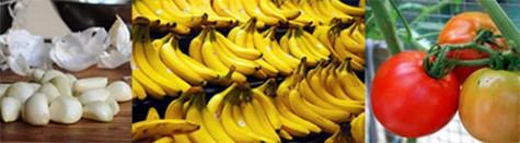 Dùng thực phẩm phòng chống bệnh để nâng cao sức khỏe