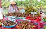 """Miệt vườn Lái Thiêu: """"Thiên đường"""" trái cây và ẩm thực từ trái cây"""