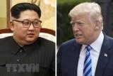 Tổng thống Trump đe dọa hủy bỏ cuộc gặp thượng đỉnh Mỹ-Triều