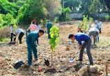 Lan tỏa các hoạt động bảo vệ môi trường