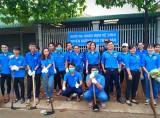 Phường đoàn Tân Bình (TX.Dĩ An): Tổ chức ra quân vệ sinh đường phố