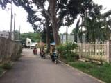 Công an xã Thanh Tuyền, Huyện Dầu Tiếng: Phá án từ tin báo của người dân