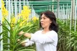 Hội Nông dân huyện Bàu Bàng: Tích cực hỗ trợ nông dân làm kinh tế
