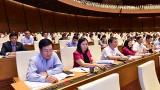 越南第十四届国会第五次会议:确保网络空间的信息安全