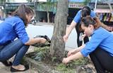 For a green Binh Duong City