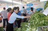 TX.Bến Cát: Nỗ lực giải quyết chợ tự phát