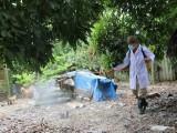 Cả nước hiện có 3 ổ dịch cúm A/H5N6, nguy cơ lây lan cao
