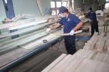 Kỳ vọng sự tăng trưởng cao hơn của ngành gỗ
