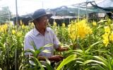 Phát triển mạnh nông nghiệp đô thị