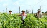 Đẩy mạnh phát triển kinh tế hợp tác
