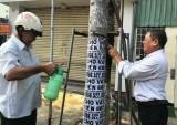 Cựu chiến binh phường Phú Cường ra quân làm đẹp đường phố chào mừng sự kiện WTA