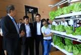 Hướng đến phát triển các đô thị khoa học bền vững