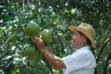 Xây dựng phát triển nông thôn, hướng đến nền sản xuất nông nghiệp hiện đại- Bài 2