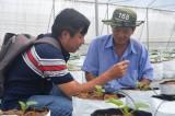 Xây dựng phát triển nông thôn, hướng đến nền sản xuất nông nghiệp hiện đại- Bài 3