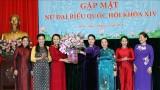 越南国会主席阮氏金银会见第十四届国会女性代表