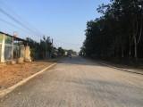 Xã Long Hòa (Dầu Tiếng): Thực hiện tốt giải pháp nâng chất các tiêu chí nông thôn mới
