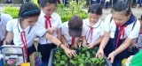 Nhà thiếu nhi Phú Giáo: Tổ chức sân chơi sáng tạo trẻ