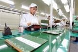 Hàng Việt xuất sang Trung Quốc tăng dần tỷ trọng hàng công nghiệp